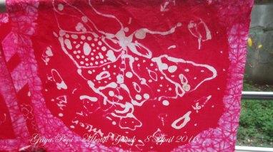 19. kupu2 merah IMG_0248